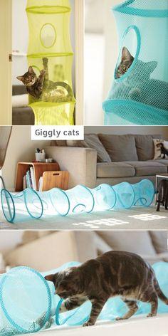 katze regal katze wand regal wei en gebogenen regal katzenm bel weichen hellgrau kissen. Black Bedroom Furniture Sets. Home Design Ideas