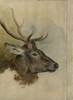 Things of beauty I like to see, Animal studies by Edwin Henry Landseer, R.A....