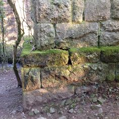 Granite base of I.K.Brunel' broad gauge viaduct at Glaze Brook the pillars carried a single track on timber trestles it was built in 1848. Later Brunel replaced it with a twin track stone and brick structure in 1893. 19/1/15 SX 68816 59072 457:81