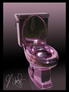 Purple Chrome Toilet...Seriously!!!!! Oh YEAH!!!!