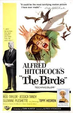 "October 16 -- Alfred Hitchcock's ""The Birds"" (1963)"