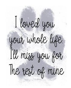I Love Dogs, Puppy Love, Der Boxer, Miss My Dog, Pet Loss Grief, Labrador, Pet Remembrance, Grieving Quotes, Loss Quotes