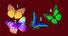 pillangók lélek személyiség teszt Beautiful Symbols, When You Smile, The Secret, Moth, Insects, Butterfly, Quizzes, Autumn, The Soul