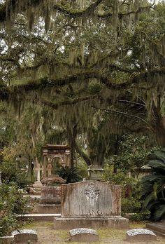 Bonaventure Cemetery - Lang Headstone by mjp*, via Flickr