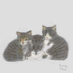 catfamily - by Ozaki, 2015