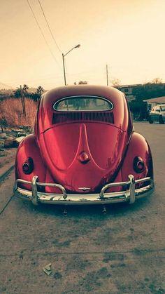 Car Volkswagen, Vw Cars, Alpha Romeo, Vw Classic, Vw Vintage, Bugatti, Lamborghini, Ferrari, Unique Cars