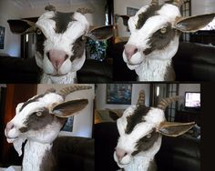 awesome paper mache goat. I love this artist's work!