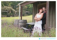 Wedding Photography in Auckland, New Zealand. A Bride and Groom steal a quiet moment alone together.
