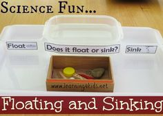 Floating and sinking science activity