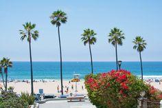 Around Town: Manhattan Beach - Homey Oh My!