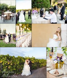 Trentadue Winery Wedding ~ Healdsburg with @Cole Roberts Drake Events