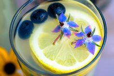 Refreshing Summer Drinks Roundup   http://pescetarianjournal.com/refreshing-summer-drinks-roundup/