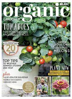 Edible Succulents, Aloe Vera For Skin, Spring Recipes, Pdf Magazines, Water Wise, Organic Gardening, November 2019, Bloom, Plants