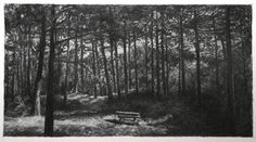 Bench # 2 (Dutch Dunes)  alice brasser