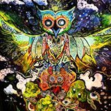 """""""At the center of your being, you have the answer; you know who you are and you know what you want."""" ~ lao tzu  So go get it forest owls //"""