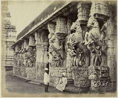 Temple Sculptures in Tiruchirappalli (Trichy) Tamil Nadu - c1880's
