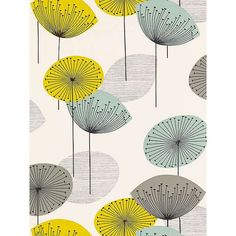 BuySanderson Dandelion Clocks Wallpaper, DOPWDA104, Chaffinch Online at johnlewis.com