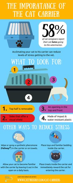 The importance of a #Cat carrier for going to the Vets (infographic) via @CatFriendly  #Cat2VetDay - National #TakeYourCattotheVet Day | The Cat Community