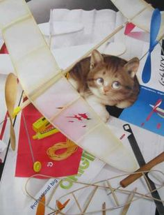 """""""Trainee Pilot"""" by  Makoto Muramatsu   A cute kitten wishing to be involved in his flight from the ground up!"""