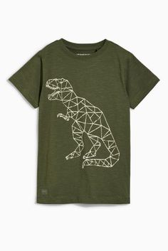 Buy Two Pack Dinosaur And Beyond Cool T-Shirts (3-16yrs) online today at Next