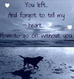 Losing a pet quotes cat so true ideas I Love Dogs, Puppy Love, Der Boxer, Pet Loss Grief, Dog Poems, Pet Remembrance, Loss Quotes, Death Quotes, Sad Quotes