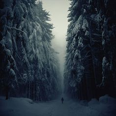 20 Breathtaking Examples of Winter Landscape Photography