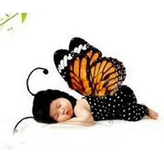 Little Boosh Butterfly Costume - $25 Material: Cotton, Polyester and Acryic. Ages: Suitable for 0 months to 6 Months Color: Yellow and Black Delivery Time Frame: 2 Weeks.