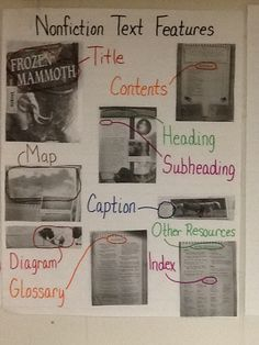 Nonfiction Text Features Anchor Chart - 4th Grade FLC 13/14