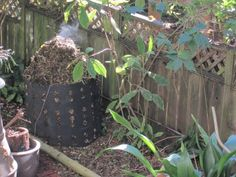 Heat And Compost: Heating Up Compost Piles - To destroy weed seeds and decompose matter more quickly in compost, the proper temperature must be met. To learn more about heating up compost effectively, continue reading this article.