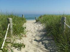 beaches............