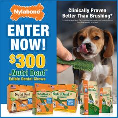 Enter for a chance to win $300 of Nutri Dent Edible Dental Treats!! http://a.pgtb.me/SX43mN #sweepstakes #giveaway #dogs