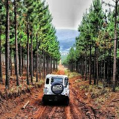 Land Rover Defender I the mud way forest. Pretty spectacular!
