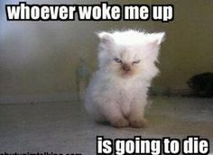 Me... Every morning