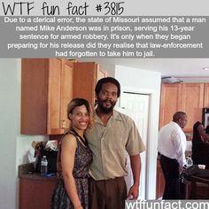 WTF Fun facts.