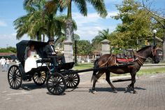 MaynorPhotographer.com    Costa Rica Wedding Photographer, Destination Wedding Photographer