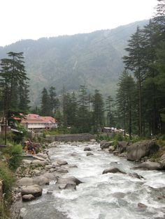 River in Manali