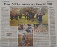 Χρήση ζεόλιθου ενάντια στον δάκο της ελιάς. ''Φιλελεύθερος'', 05/05/2014