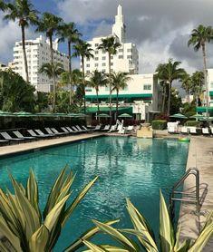 South Beach, Florida, Outdoor Decor, The Florida
