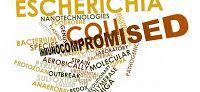 Activist Post: Gut Biota Never Recover from Antibiotics: Damages Future Generations