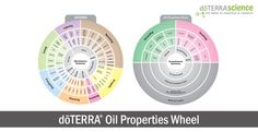 Print PDF Download here:dōTERRA Oil Properties Wheel. The Oil Properties Wheel is a tool designed to help our Wellness Advocates better understand the chemistry behind essential oils. In understanding the basic chemistry of each oil, individuals can more fully understand when and how to use the oils to achieve a desired benefit. The wheel is...