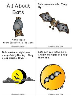 FREE All about Bats Close Read or Mini Book.  Bats printables.