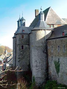 Château d'Écaussinnes-Lalaing Province de Hainaut Belgique 50,568250, 4,176781