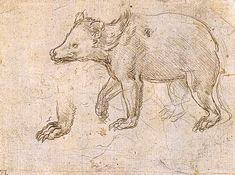 leonardo da vinci paintings | Studies of a BeWalking - Leonardo da Vinci - WikiPaintings.org