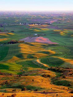 Steptoe Butte - Palouse, WA by Kathleen Jones