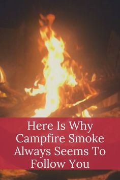 We all love campfires but many people don't like campfire smoke. Yet it can appear that the smoke always follow you when you move. Learn why this happens. Tent Camping, Camping Gear, Outdoor Camping, Camping Products, Campfires, Follow You, Camping Essentials, Ways To Travel, Love Is All