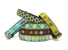 Best dog collars and leashes