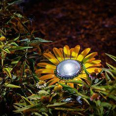 Butter Yellow Daisy Solar Light – Desert Steel Co - All For Garden