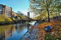 Leicester, City Photo, Skyline, England, Photoshoot, Explore, Places, Travel, Inspiration