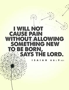 """I will not cause pain without allowing something new to be born,"" says the Lord. #miscarriage #dandelions4emma #emptyarms #breakthesilence #backtozero #angelmommy #angelbaby #mydaughterlivesinheaven"