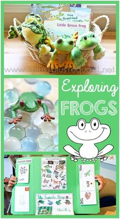 Frog Unit Study and Lapbook ~ 1st Grade unit study all about frogs, interest-based and all free printables used!